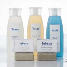 Telese still life-3