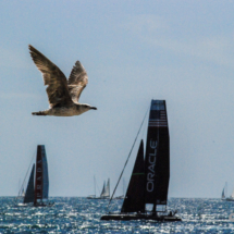 America's Cup-19